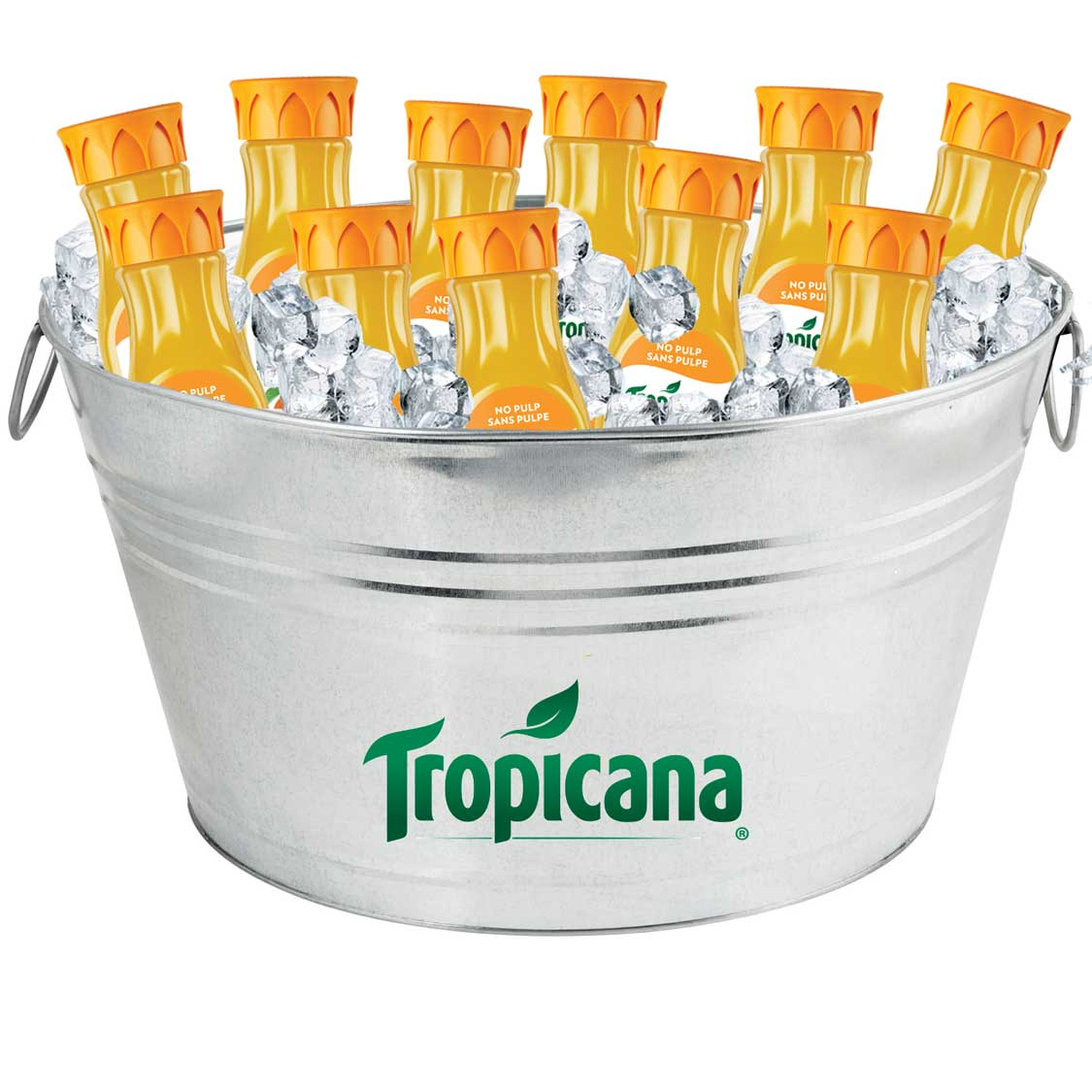 Oval Galvanized Metal Tub - Tropicana